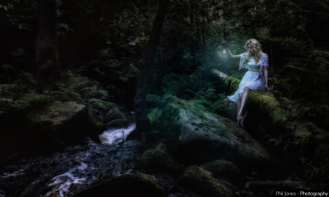 Fairy inspired - Female Elf at night fall - fantasy art photography by Phil Jones
